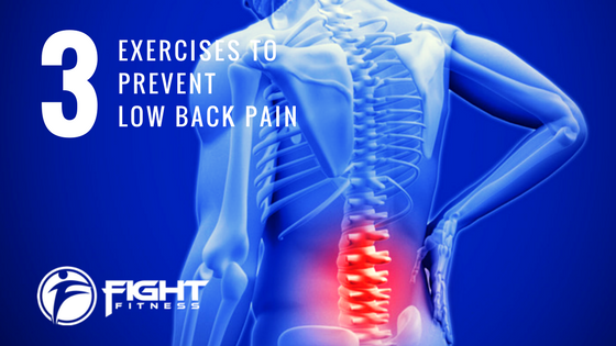 3 Exercises To Prevent Low Back Pain